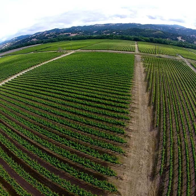 Aerial view of Brownell Vineyard in Alexander Valley